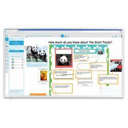 Интерактивный дисплей SBD-2075 без распознавания касаний